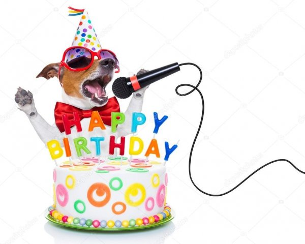 depositphotos_72790263-stock-photo-happy-birthday-dog.thumb.jpg.41788774e3a0a89cae36e4ab785041d4.jpg
